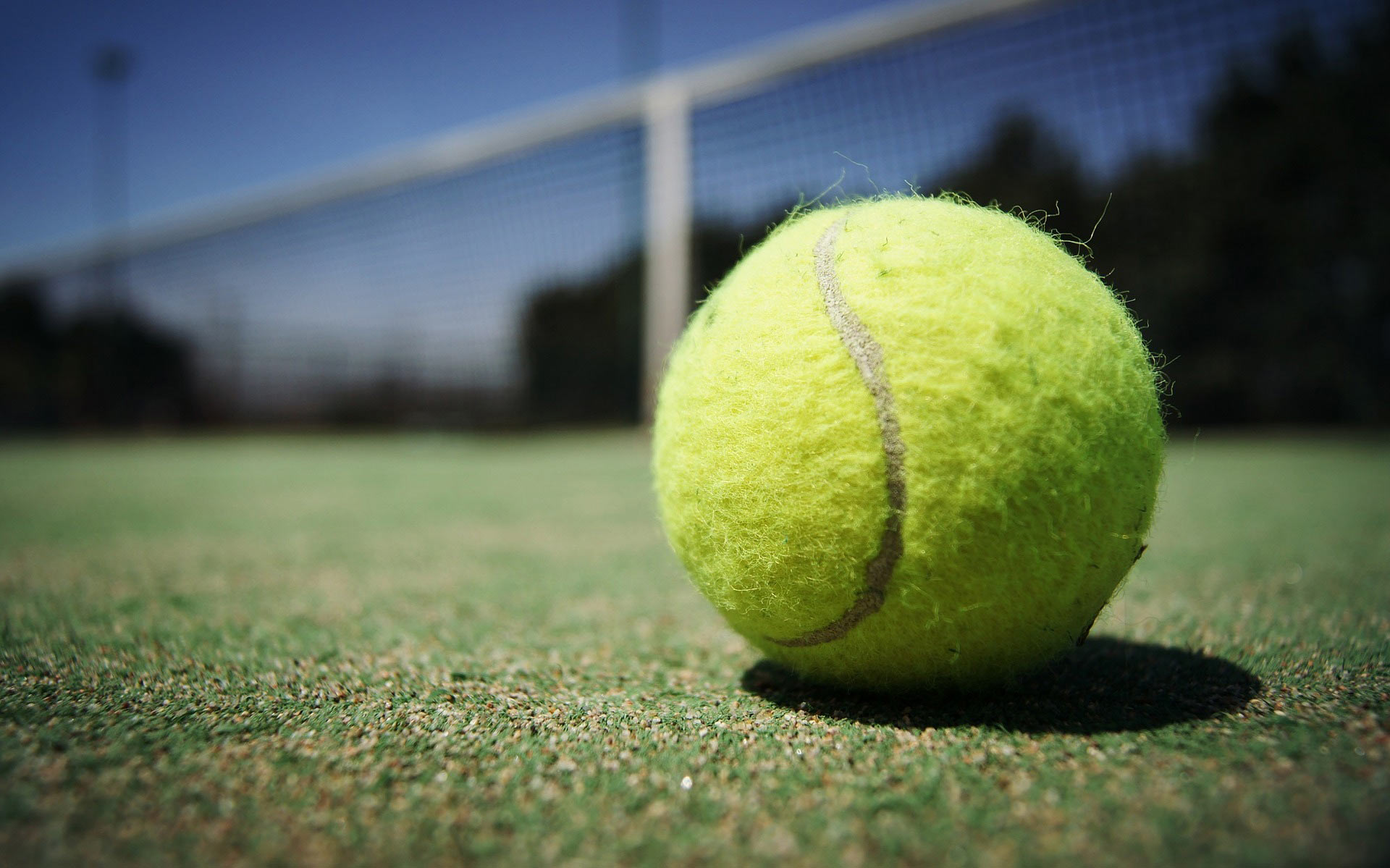 close-up of tennis ball on tennis court